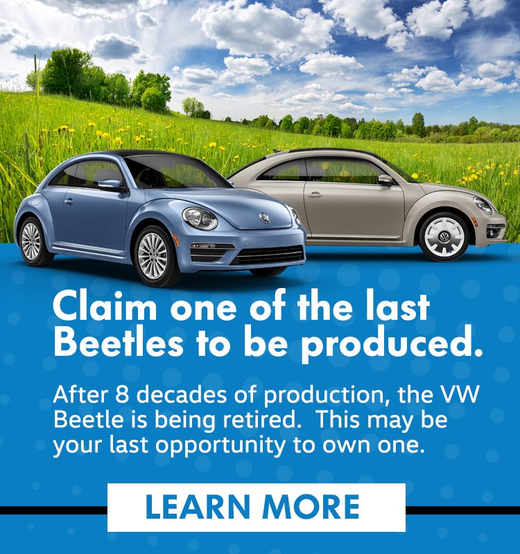 Last of the Beetles